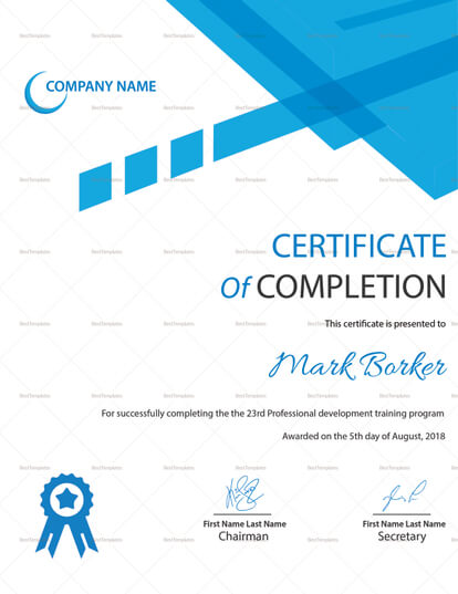 Professional Certificate Template from templaten.net