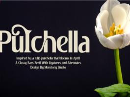 PULCHELLA - FREE FONT