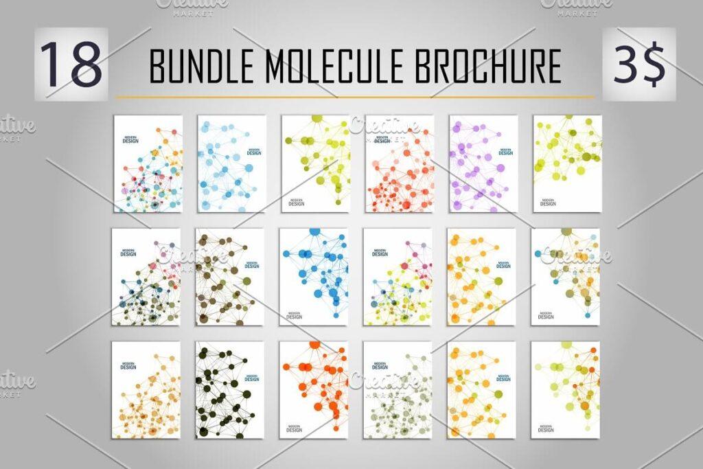 Bundle molecule brochure