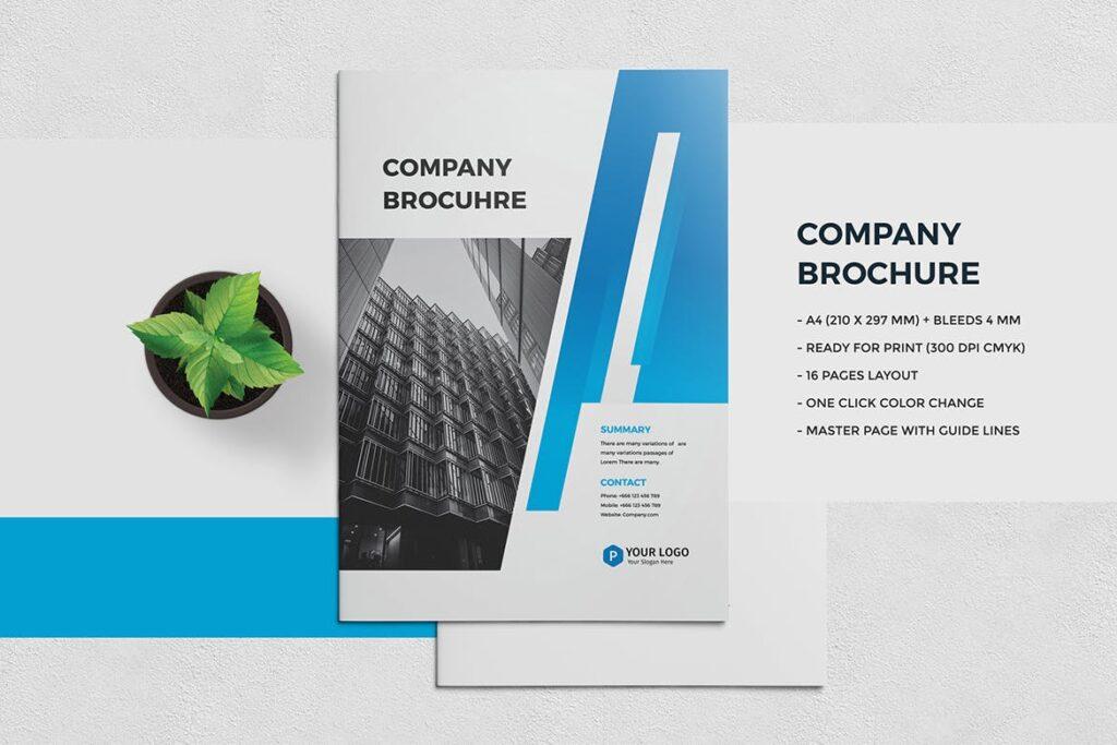 Company Brochure2
