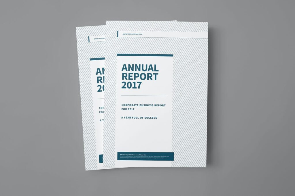 Company Brochure3