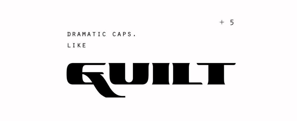 Free Ascardi Sans Display Typeface3