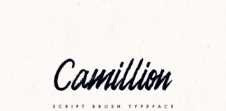Free Camellion Brush Script Typeface1