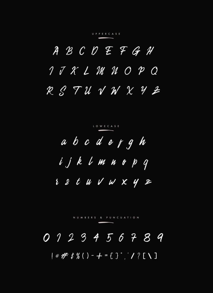 Free Camellion Brush Script Typeface5