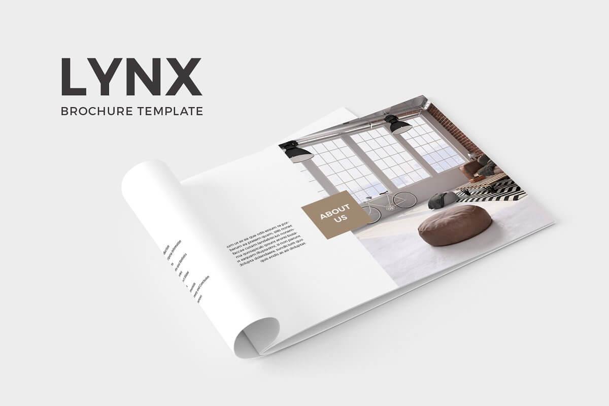 Lynx Brochure Template (1)