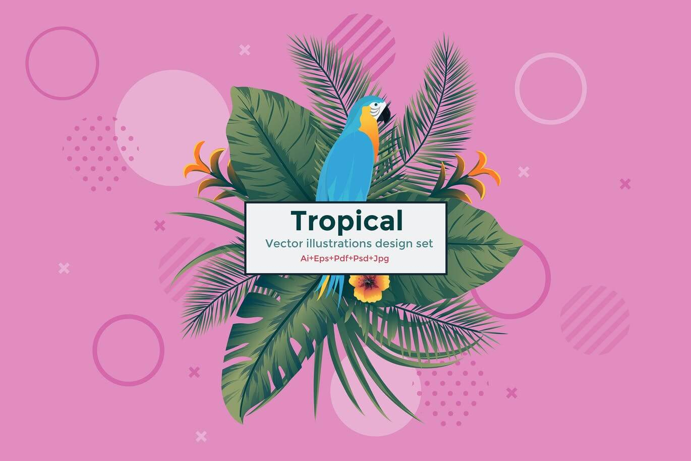 Set of 5 Tropical Flyer Template (1)