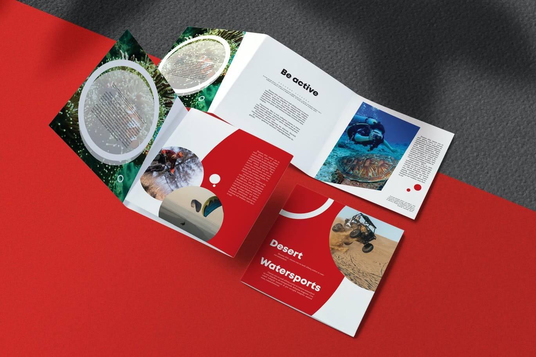Sport Brochure (2)