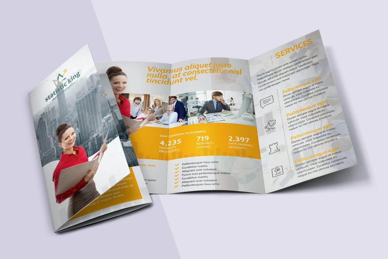 Statistics Tri-fold Brochure (1)