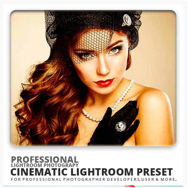 Cinematic Lightroom Preset5
