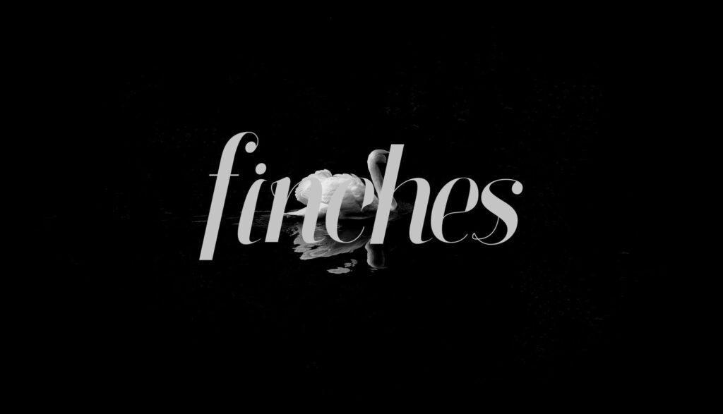 Free Attractive Finches Serif Italic Font1