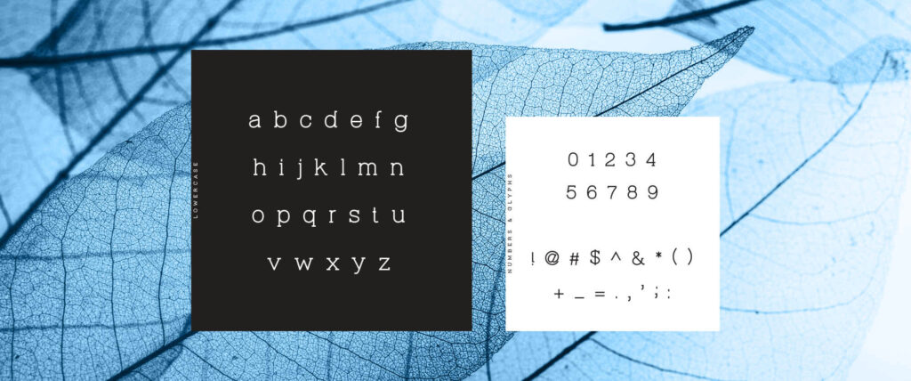 Free Beautiful Virtuous Slab Font5
