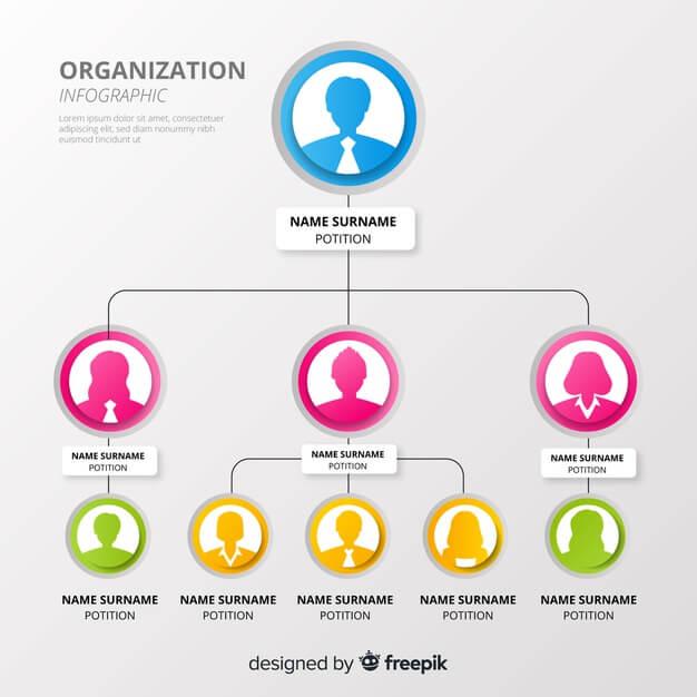 Organization chart Free Vector2