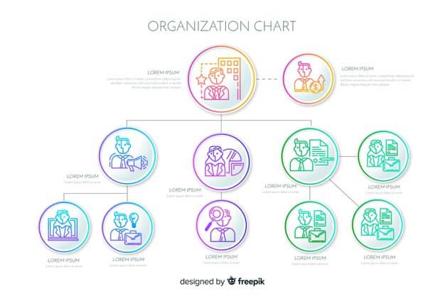Organization chart Free Vector5