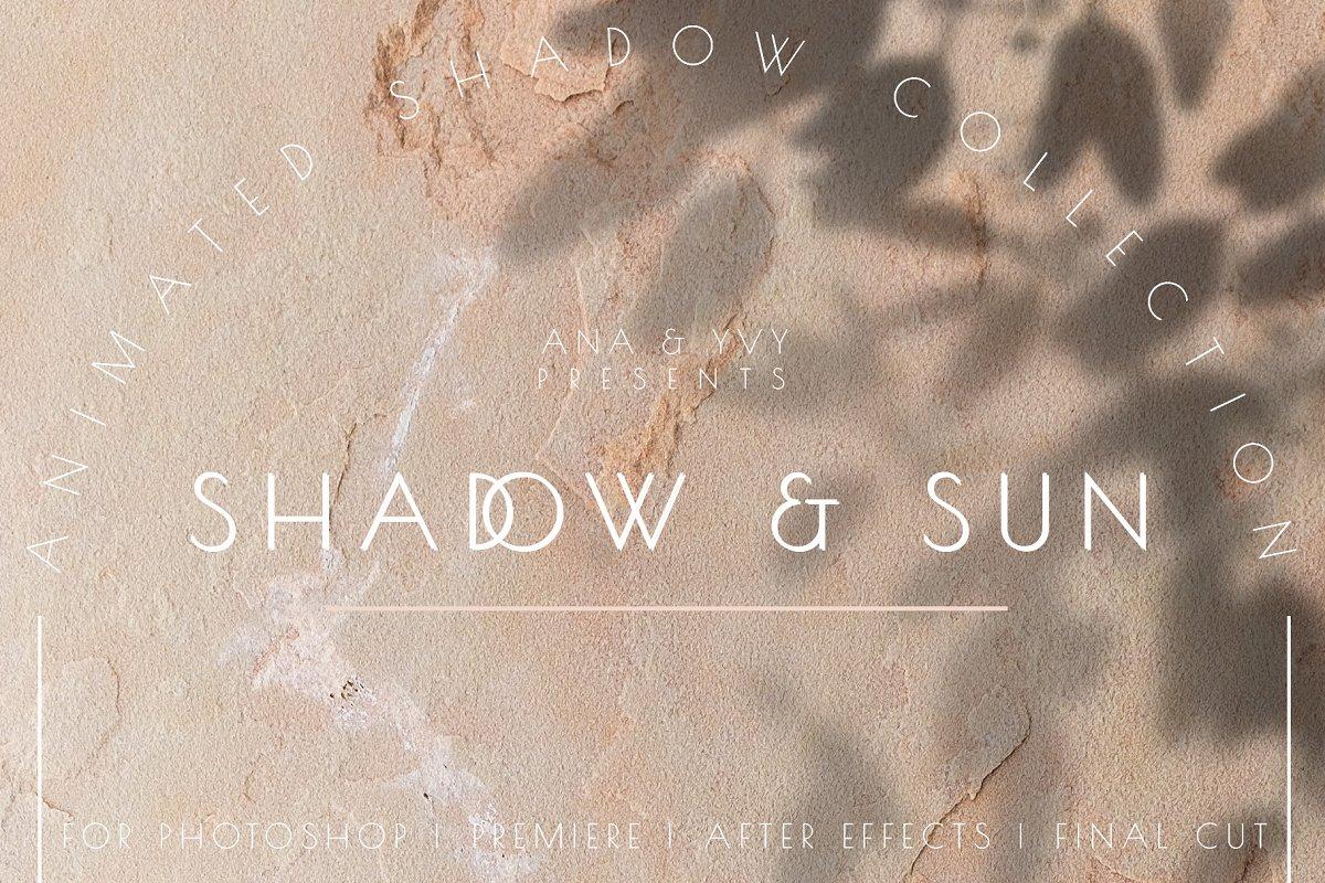 Animated Shadow & Light Overlay