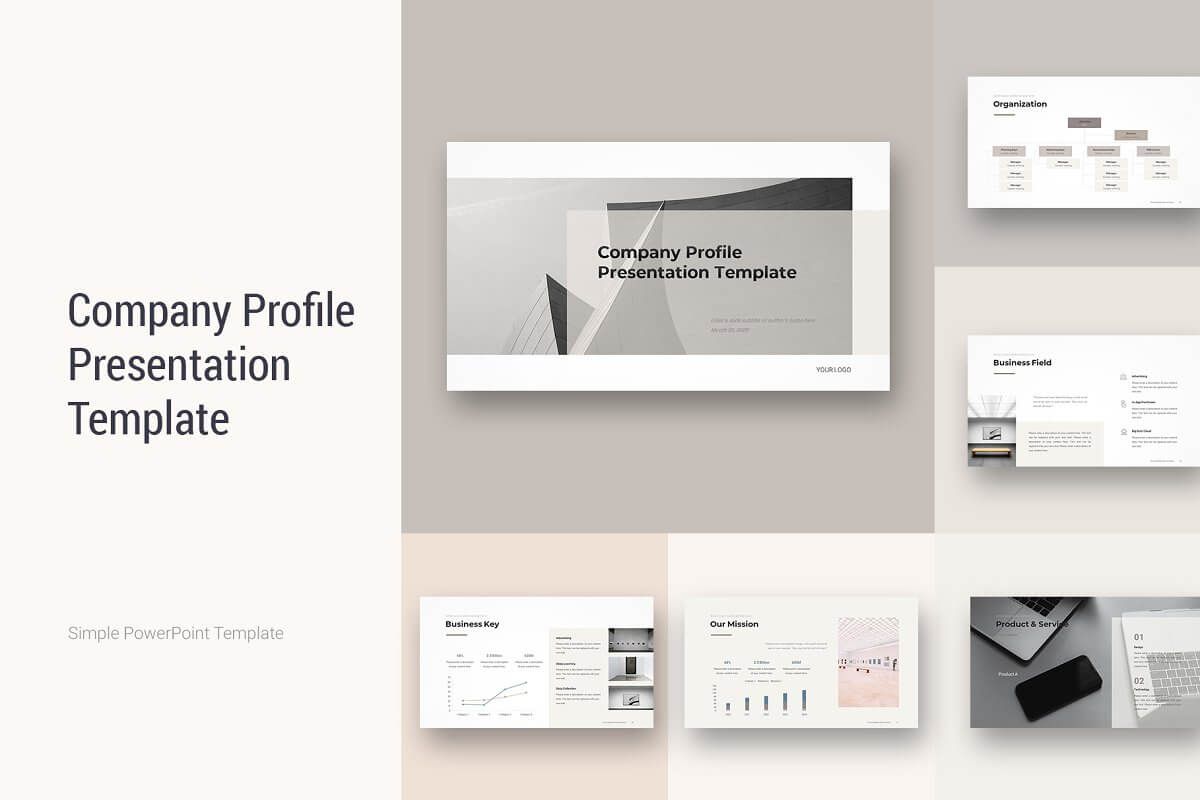 Company Profile PowerPoint 2020