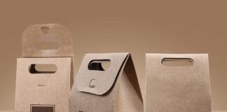 Free Vectogravic Kraft Paper Bag Mockup PSD Template