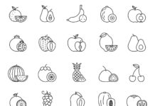Free Juicy 20+ Fruit Vector Icons