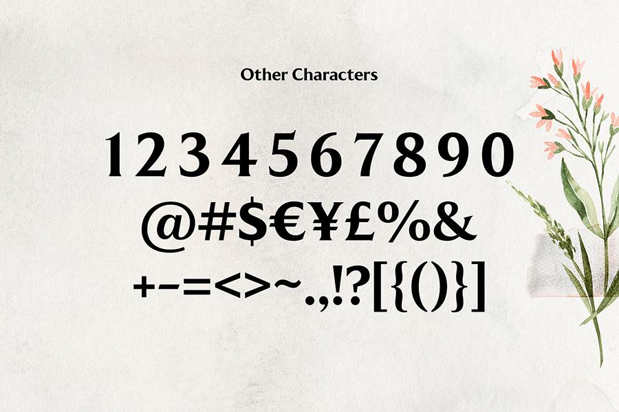 Free Kenfolg Serif Demo3