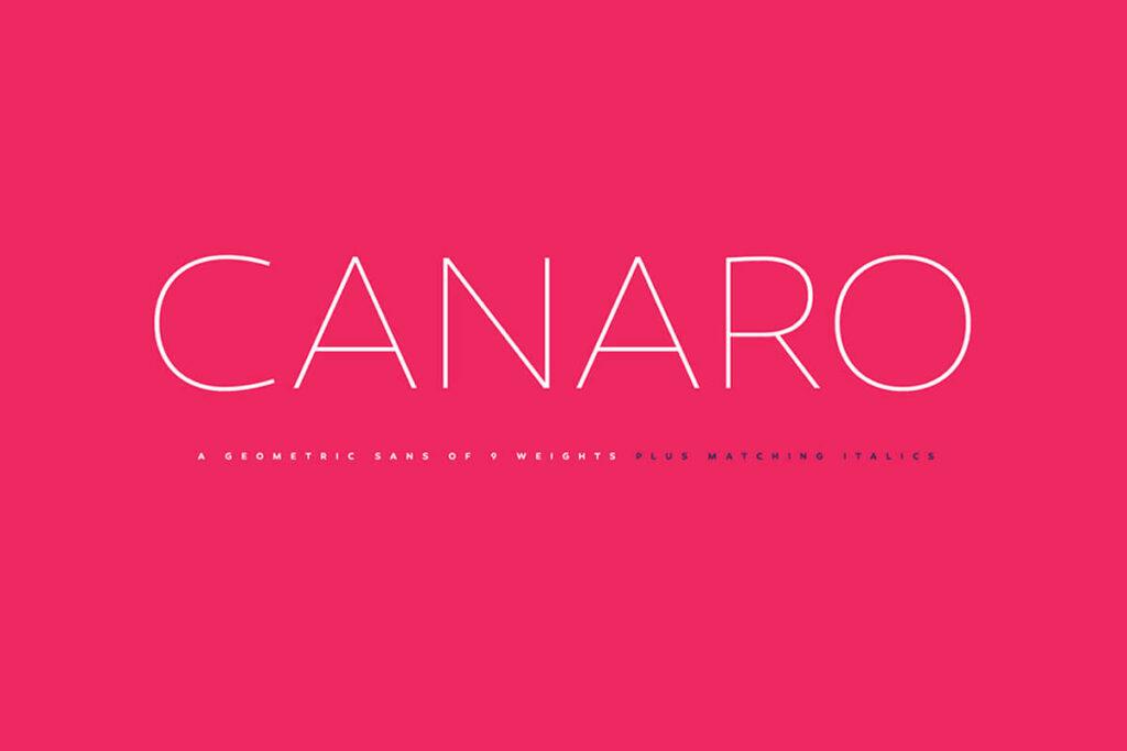 Free Thin Canaro Demo Fon