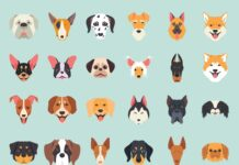 Free 30+ Dog Breeds Vector Illustration Icons (1)