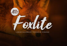 Free calligraphic Foxlite Brush Script (1)