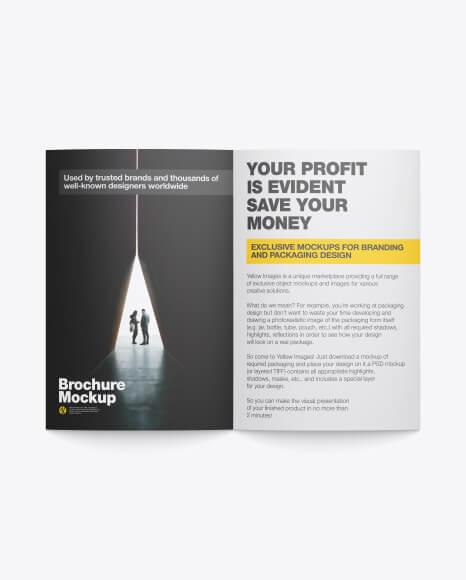 Matte Brochure Mockup (1)