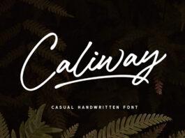 Free Caliway Casual Handwritten Font (1)