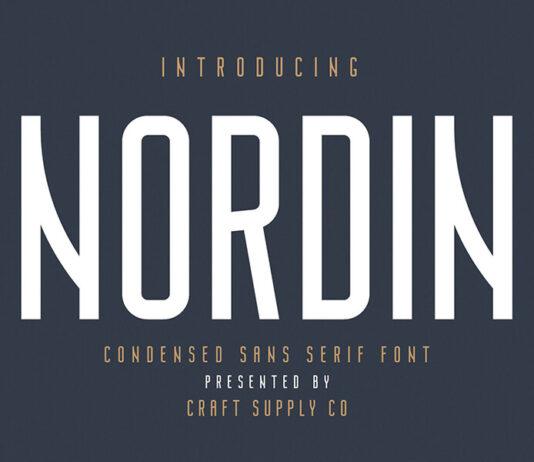 Free Nordin Sans Serif Demo Font (1)