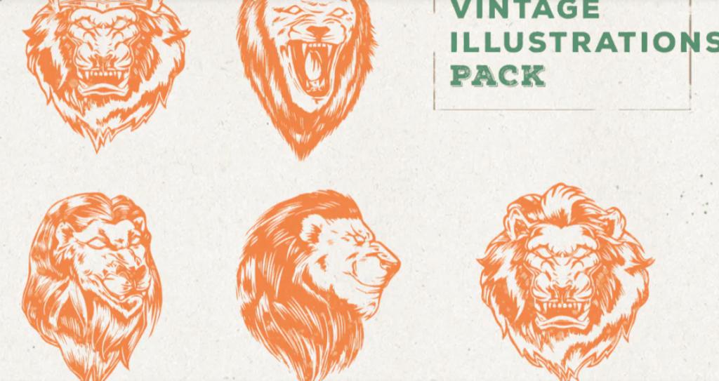 Vintage Lion Illustration Pack
