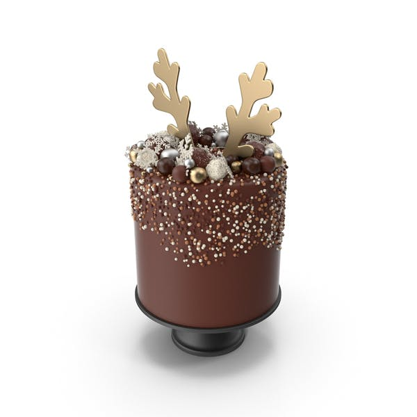 Christmas Cake with Reindeer Antlers Topper (1)