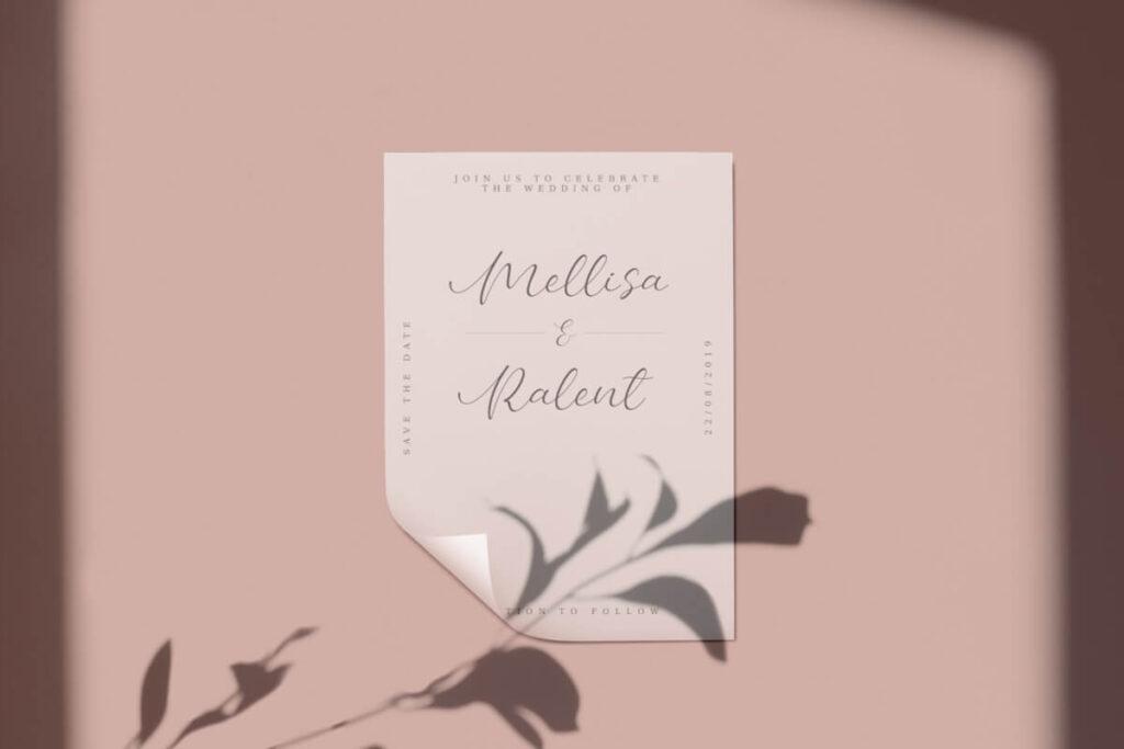 Free Bellany Modern Script Font2 (1)