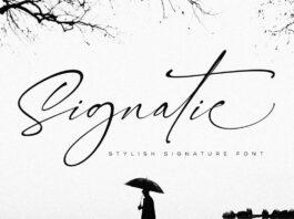 Free Signatie Stylish Signature Font (1)